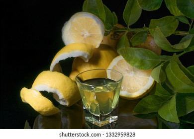 Traditional homemade lemon liqueur limoncello and fresh citrus on the black backgound. The limoncello made with lemon. Italian alcoholic beverage.