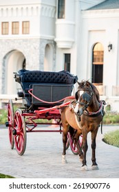 Traditional Horse Carriage, Lampang, Thailand,Horse ride in Killarney National Park
