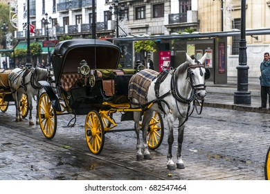 Traditional horse and carriage.Seville, Andalusia, Spain.