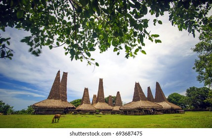 """traditional house of ratenggaro"" - Sumba Island,  Indonesia"