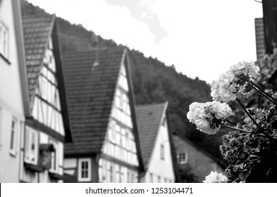 Traditional houses in a German village, with white walls,  sloping roofs and wooden detailing. A window box with flowering geraniums frames the view.