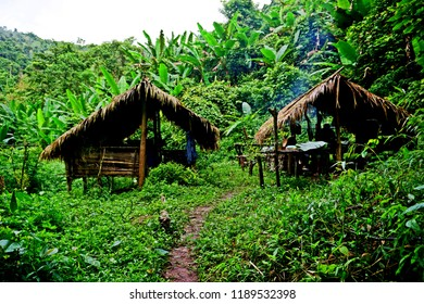 traditional hut, campsite in lush tropical forest, Nam Ha National Protected Area, Laos