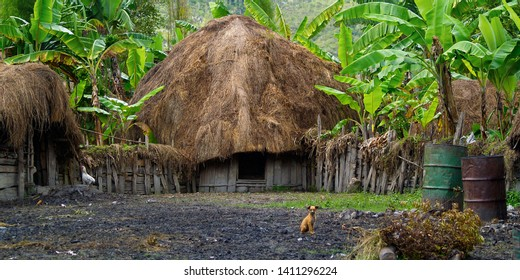 traditional hut of dani people in baliem valley, western papuasia-indonesia