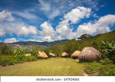 Traditional huts Papuans in Wamena, Papua New Guinea Island, Indonesia