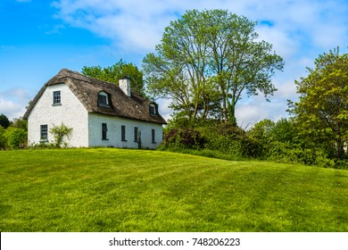 A traditional Irish country cottage house with thatch roof sat next to trees.