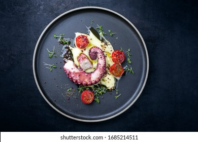 Traditional Italian polpo alla griglia su crema di patate with barbecued octopus, potato puree cream and tomatoes as top view on a modern design plate with copy space