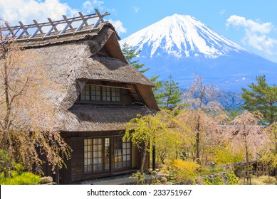 Traditional Japanese hut and Sakura or cherry blossom near Mt. Fuji, Japan in spring season.