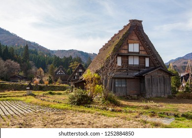 A traditional Japanese Wada farmhouse with its characteristic thick thatched roof by a hill in Shirakawa go full of trees with colorful autumn leaves