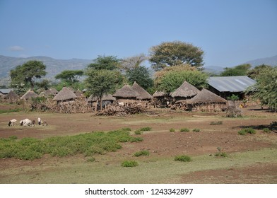 Traditional Konso tribe village