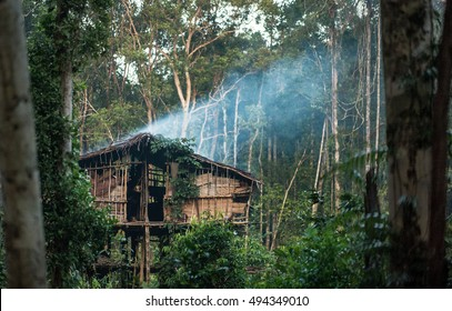 Traditional Korowai house perched in a tree above the ground, Western Papuasia, former Irian-jaya, Indonesia