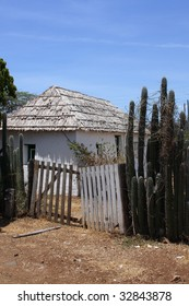 Traditional kunuku House with a traditional fence made out of cacti. kunuku means countryside in Papiamento.