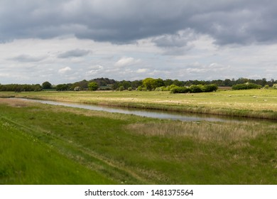 Traditional landscape of Suffolk. Showing farm lands, grazing sheep with a stream running through the middle of the landscape and big Suffolk skies