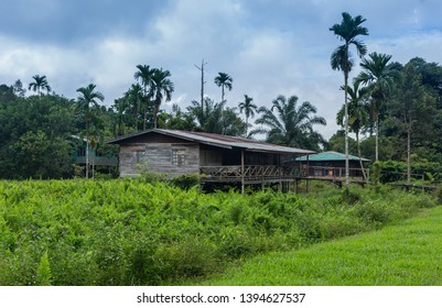 traditional longhouse - Borneo Malaysia