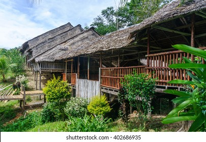 Traditional longhouse in the lush greens