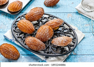 Traditional Madeleines cakes dusted with icing sugar