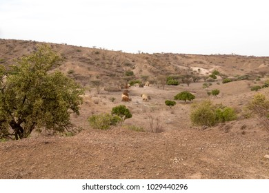 Traditional Manyatta Housing in African Desert