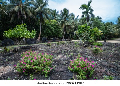 The traditional meeting plat home. Yap island. Federated States of Micronesia