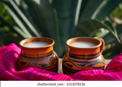 """Traditional mexican fermented beverage called """"Pulque"""" in clay cups with agave cactus"""