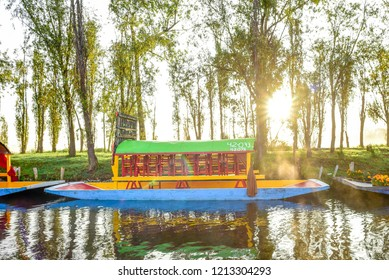Traditional Mexican trajinera boat in Xochimilco channels and lake of Xochimilco at the sunrise in Mexico City - trajineras boats