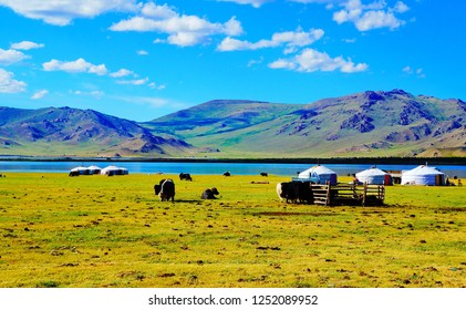 Traditional Mongolian yurts and yak herd at Terkhiin Tsagaan Lake or White Lake in the Khangai Mountains in central Mongolia, Asia