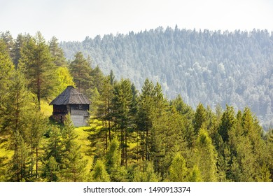 Traditional mountain house, deep inside green forest.