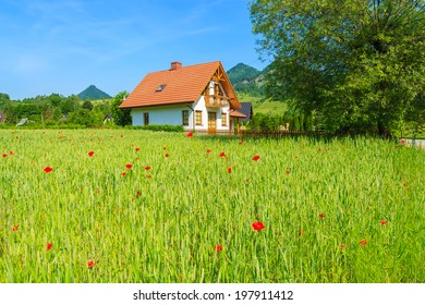 Traditional mountain house on green field with red corn poppy flowers in summer, Szczawnica, Beskid Mountains, Poland
