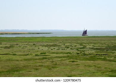 Traditional north German fishing boat with dark red sails