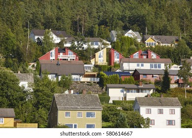 Traditional norwegian fjord village with forest. Hardanger route. Horizontal