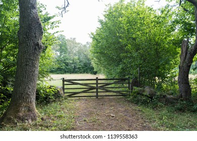 Traditional old wooden gate in a rural landscape at the swedish island Oland