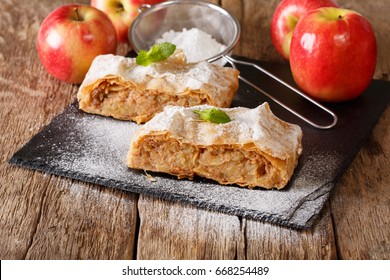 Traditional piece of apple strudel with powdered sugar and mint closeup on a table. horizontal