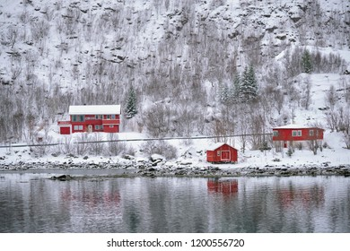 Traditional red rorbu houses on fjord shore in snow in winter. Lofoten islands, Norway