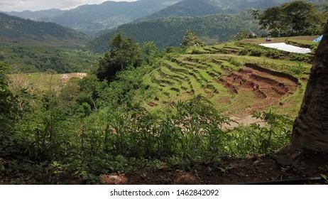 Manggarai Images, Stock Photos & Vectors | Shutterstock