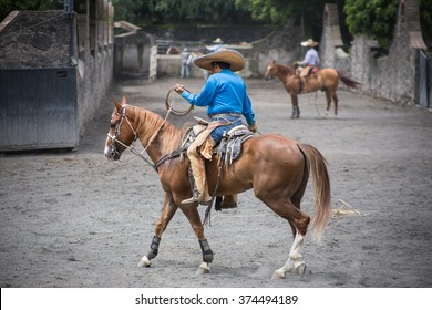 Traditional Rodeo Show In Mexico City