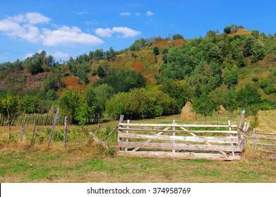 Traditional rural garden in the Romanian Carpathians, Europe