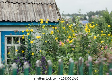 Traditional Russian country-house with autumn flowers in the garden