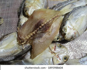 Traditional salted fish processing does not use formalin