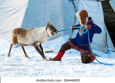 Traditional Sami reindeer-skin tents (lappish yurts) in Tromso .reindeer breeder