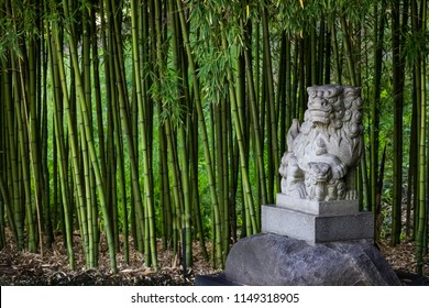 Traditional Shi Shi Dog or Shisa statue or Foo Dog - statue to ward off evil and protect in a bamboo garden.