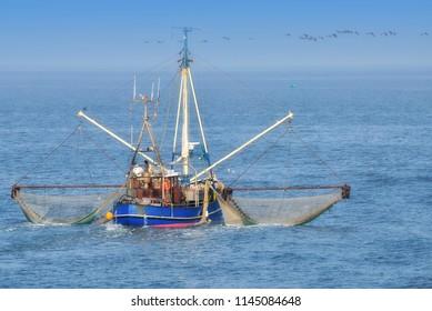 traditional Shrimp Boat on german North Sea