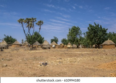 Traditional small village near Niamey, Cattle market, Niger, West African