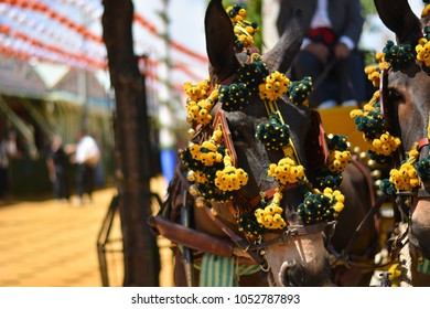 The traditional Spanish festivals with horse and mule carriages