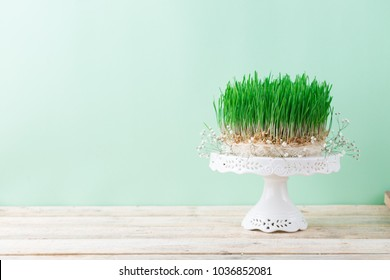 Traditional spring wheat grass semeni for Novruz celebration, Easter theme green background, red ribbon festive bow, wooden table spring equinox greeting card copy space Persian, Azerbaijan nowruz