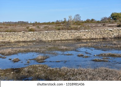 Traditional stone wall in a great plain grassland at the swedish island Oland