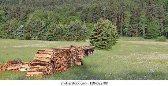 Traditional storage timber , southern Bohemia . Czech Republic