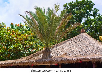 Traditional straw roof on the Bali Island.