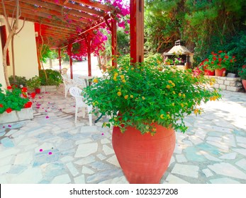 traditional terrace with flowering bushes architecture detail in Greece
