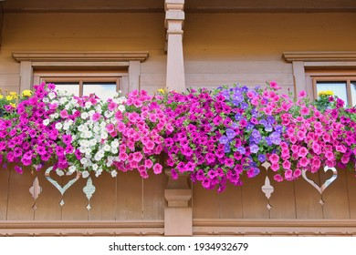 Traditional tirol house balcony decorated with varieties of petunia and surfinia flowers