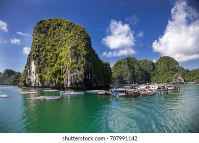 traditional vietnamese boats and floating village among beautiful limestone rocks of Lan Ha bay, the southern edge of Ha Long bay, Vietnam