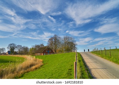 traditional vintage rural house with reed roof next to a dike in Sürwürden (district Wesermarsch, Germany) on a sunny spring day with vivid blue sky - two persons walk in social distance at horizon