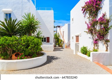 Traditional white houses decorated with flowers in Portinatx village, Ibiza island, Spain